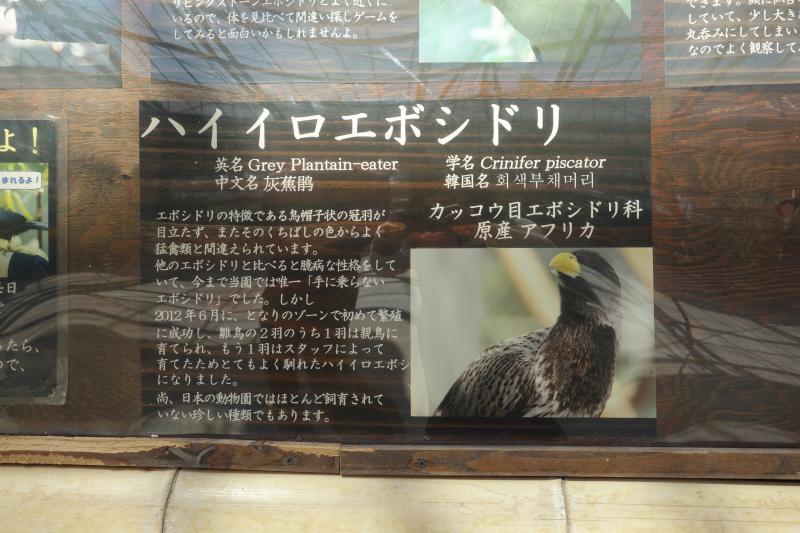 花鳥園28-1