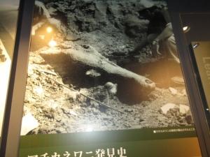 625-10.jpg