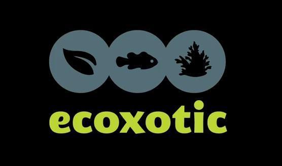 ecox logo2