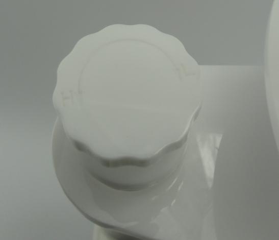 helix50004.jpg