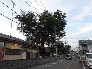 20140912077.jpg
