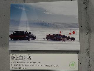 20141107016.jpg