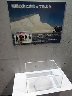 20141107044.jpg