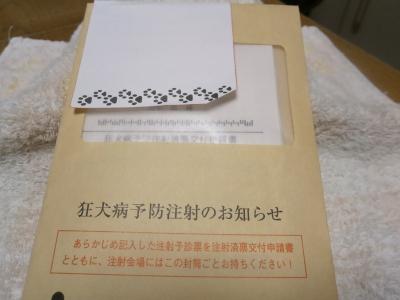 P3030011.jpg