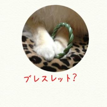 fc2blog_201403012317121d9.jpg
