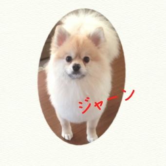 fc2blog_2014031817252388e.jpg