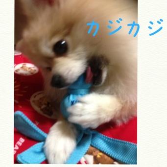 fc2blog_20140407232202096.jpg