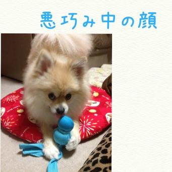 fc2blog_2014040723224518c.jpg