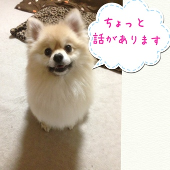 fc2blog_20140409215628d55.jpg