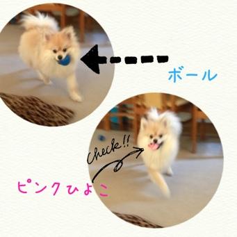 fc2blog_2014041620495703c.jpg