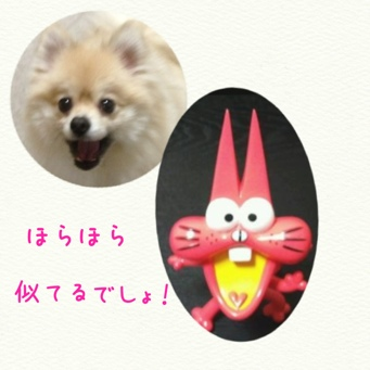 fc2blog_20140418201811973.jpg