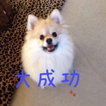 fc2blog_20140428191312694.jpg