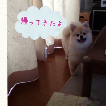 fc2blog_20140528171207029.jpg