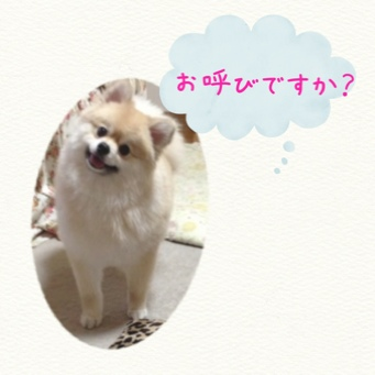 fc2blog_20140601231949556.jpg