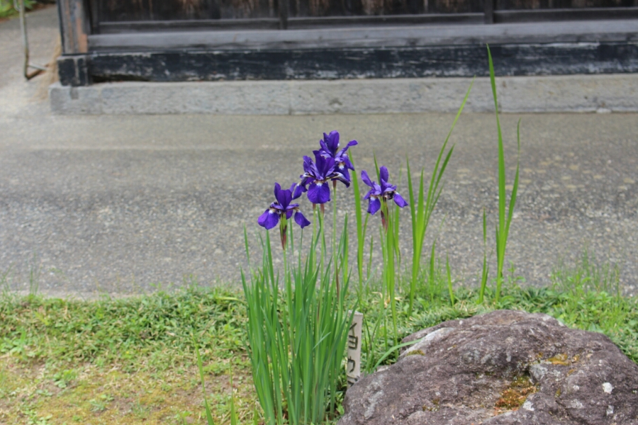 fc2_2014-05-25_20-56-38-838.jpg