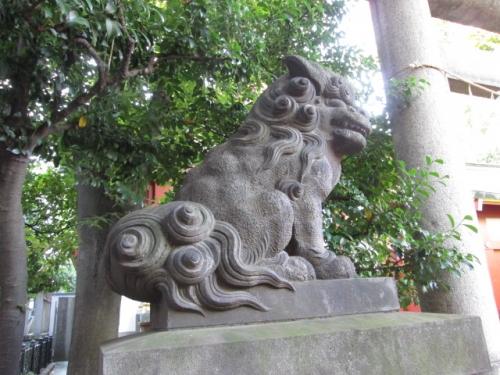 小舟町八雲神社の吽