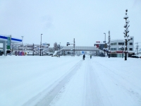 未曾有の大雪 2014年