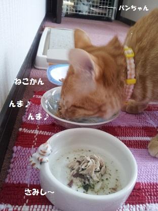 20140312_154839 - コピー