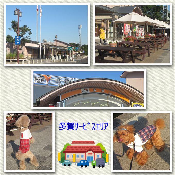 51_2014101818080472d.jpg
