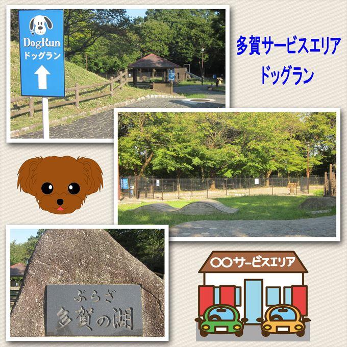 52_201410181808064b1.jpg