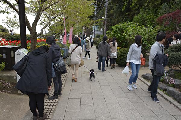 江ノ島お散歩
