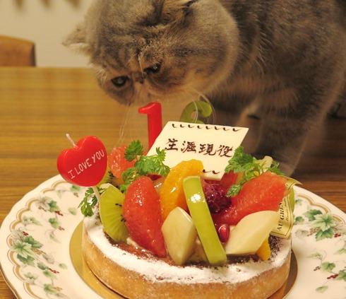 10)ケーキれつかー