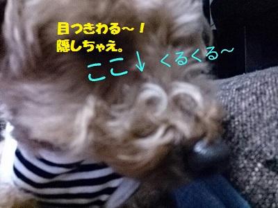 20140510d.jpg