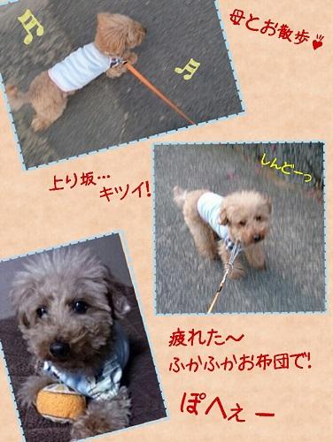 20140518c.jpg