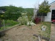 整備途中の日本庭園ゾーンP1050893