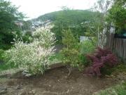 140505庭園ゾーンP1050977
