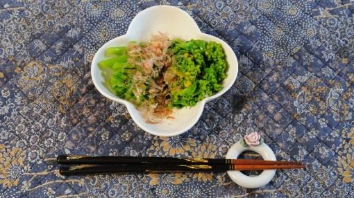 4155広島菜14376