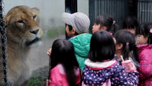 4923動物園143211