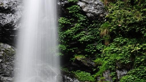 8753瀬戸の滝14679