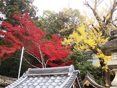 多田神社03