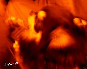 2014-03-09-09.jpg