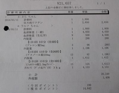 2014-05-11-11.jpg