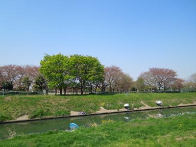 杉戸町散策2014_04