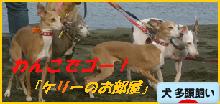 itabana3_20140827225113264.png