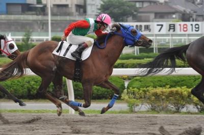 140419ヒシプレンティ 競争馬時代1