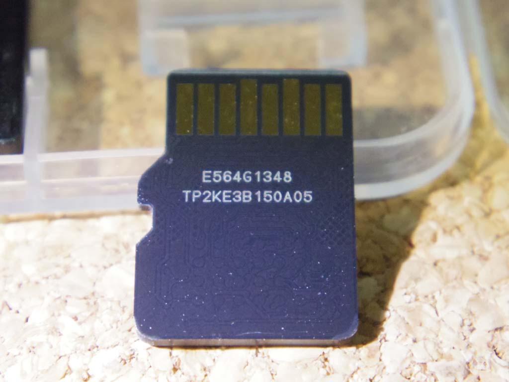 IMGP5038.jpg