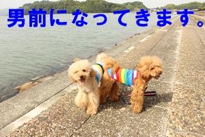 IMG_8110-18.jpg
