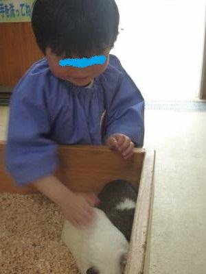 幼稚園遠足2014⑤