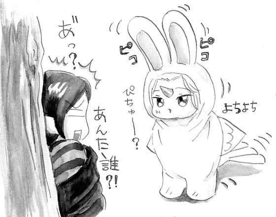 知らないウサギさん?!???!