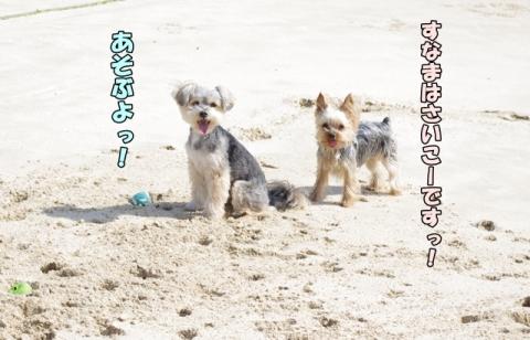 2014初海②