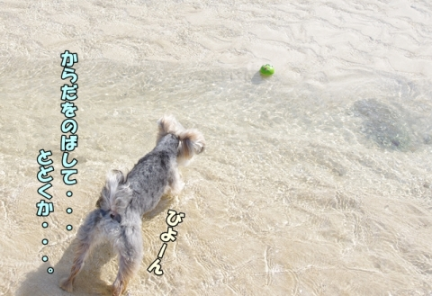 2014初海その2④