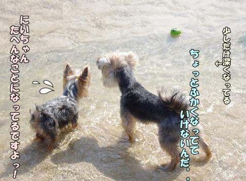 2014初海その2②