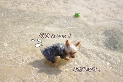 2014初海その2⑧