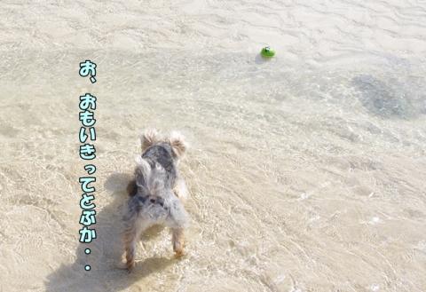2014初海その2③