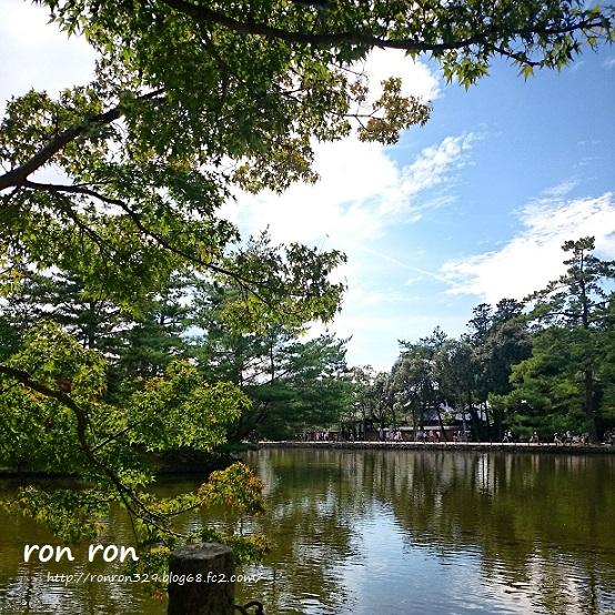 20140921photo3.jpg