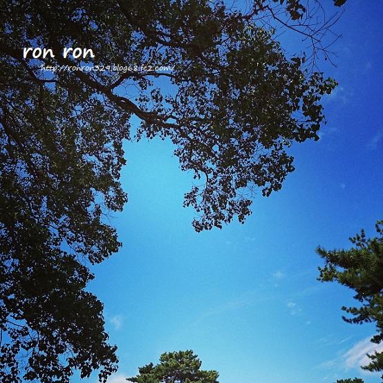 20140921photo5.jpg